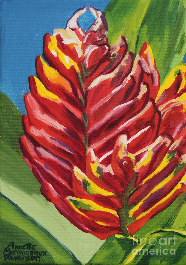 Red Bromeliad by Annette M Stevenson