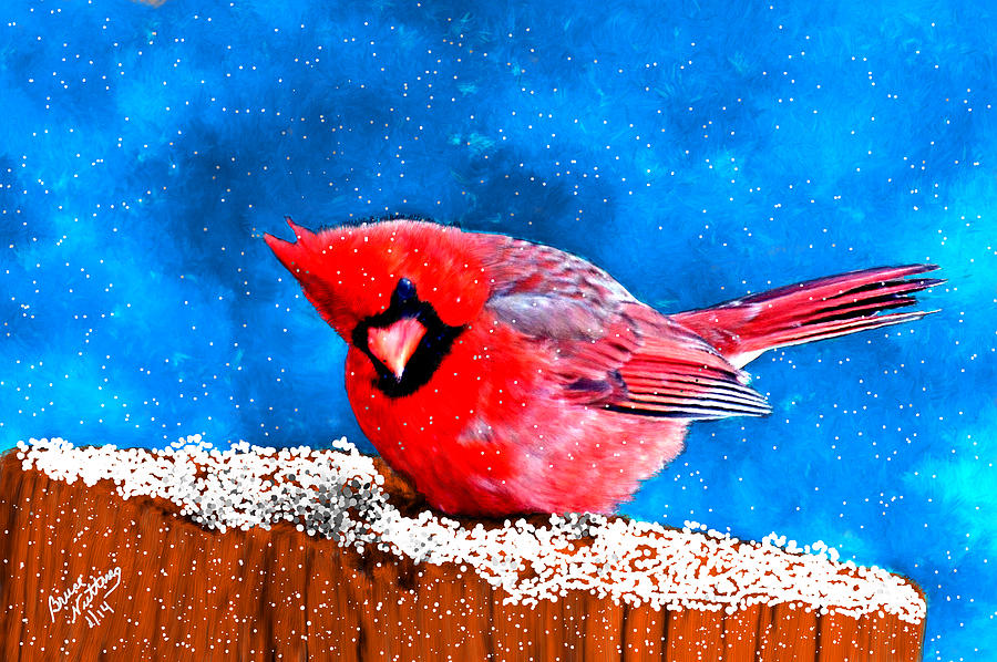 Red Cardinal In The Snow Painting by Bruce Nutting