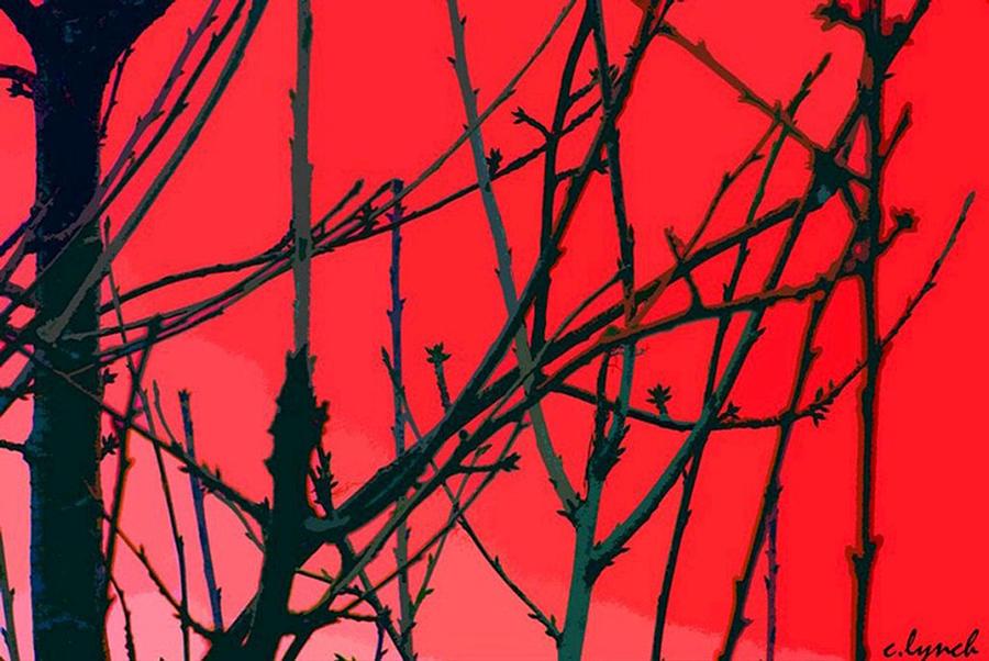 Red Digital Art - Red by Carol Lynch