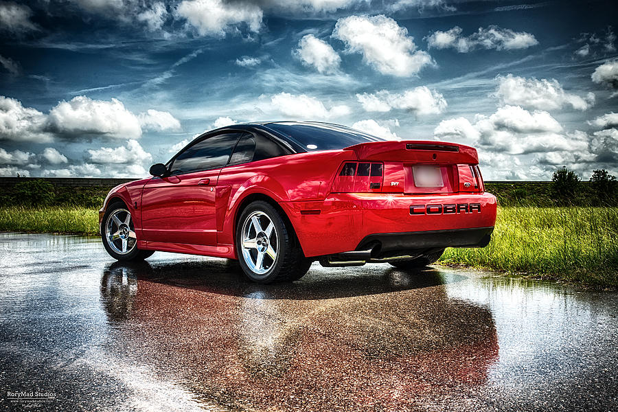 Ford Photograph - Red Cobra Rearview In Hdr by Michael White