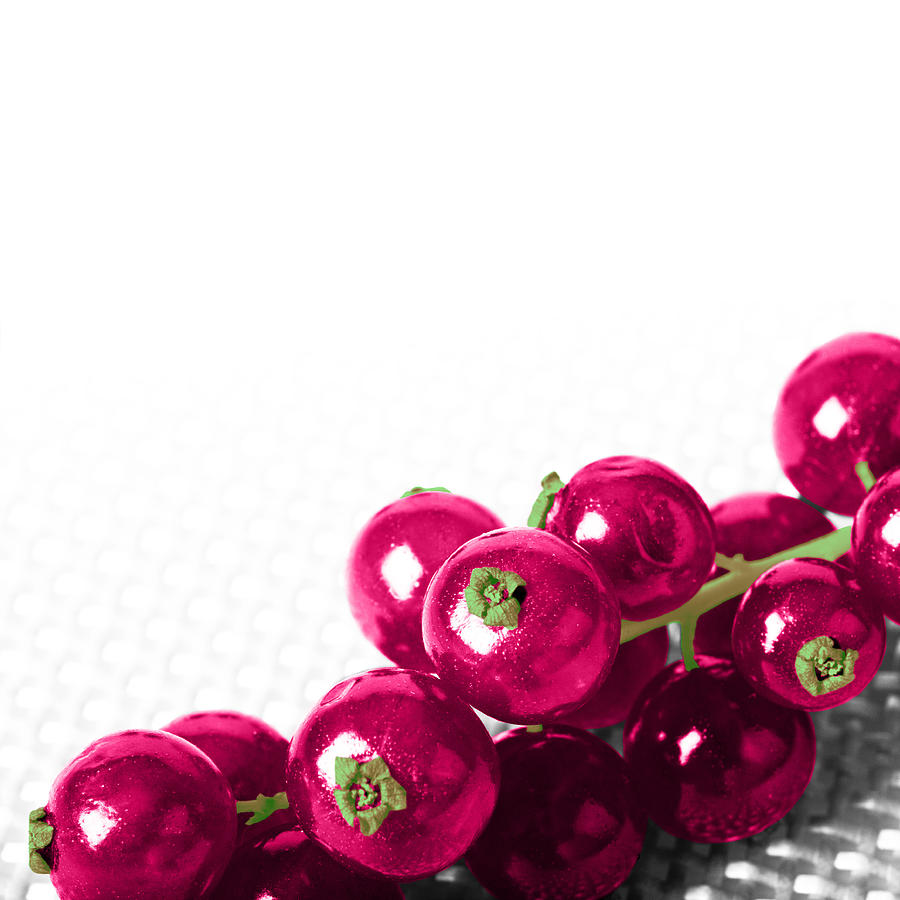Fruit Photograph - Red Currants by Nicole Neuefeind