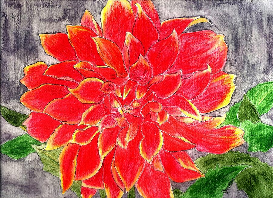 Flower Painting - Red Dalia  by Margie  Byrne