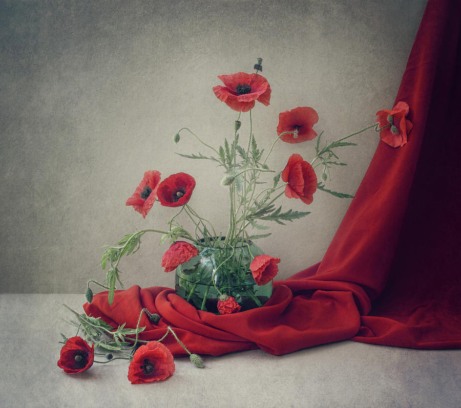 Red Photograph - Red by Dimitar Lazarov -