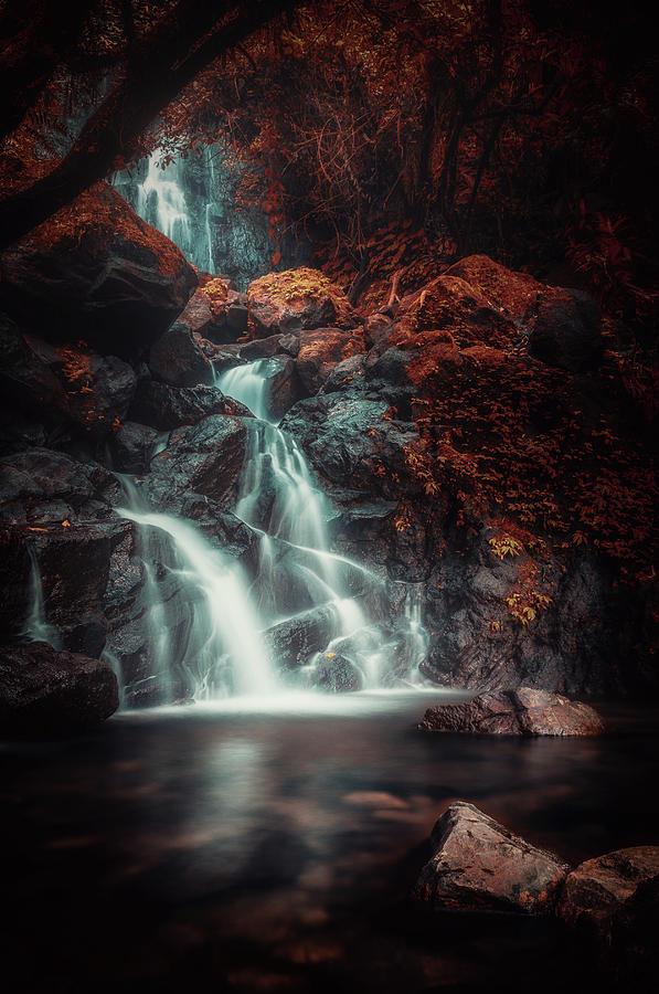 Eden Photograph - Red Eden by Rudi Gunawan