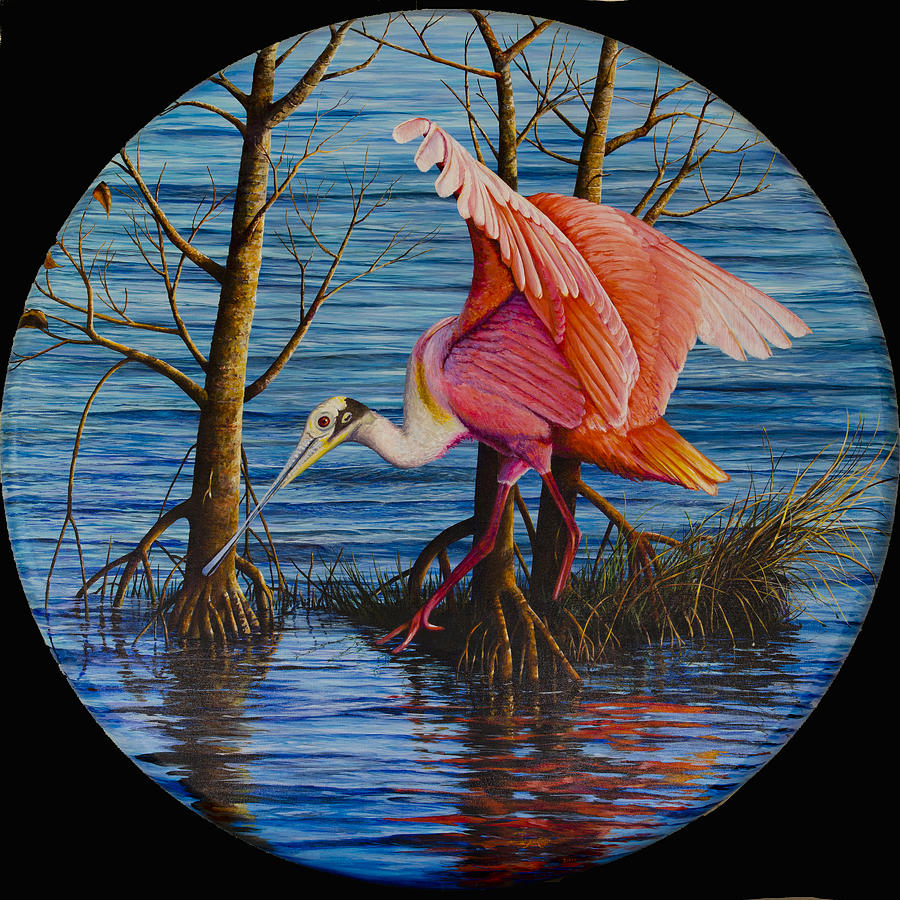Roseate Spoonbill Painting - Red Eye by AnnaJo Vahle
