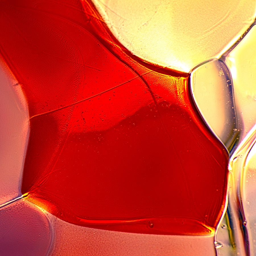Glass Photograph - Red Fish by Omaste Witkowski