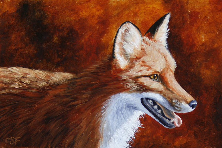 Fox Painting - Red Fox - A Warm Day by Crista Forest