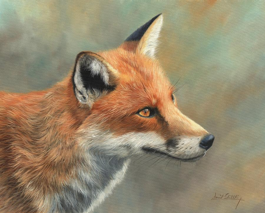 Fox Painting - Red Fox Portrait by David Stribbling