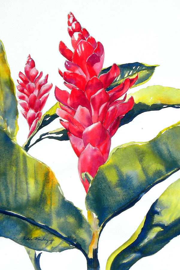 Red Ginger by Hilda Vandergriff