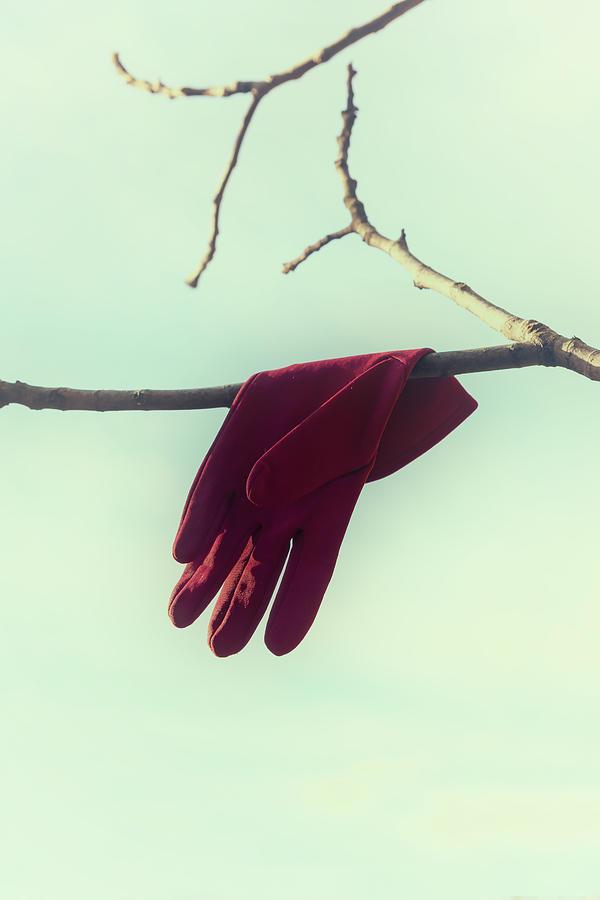 Glove Photograph - Red Glove by Joana Kruse