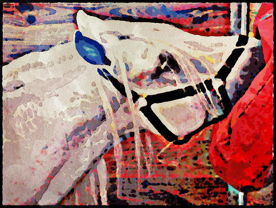 Horse Photograph - Red Hay Bag by Alice Gipson