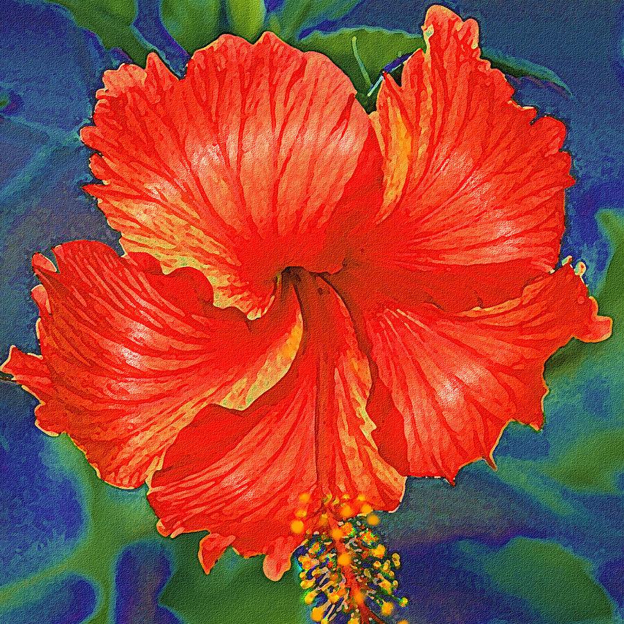 Red hibiscus flower digital art by jane schnetlage hibiscus digital art red hibiscus flower by jane schnetlage izmirmasajfo