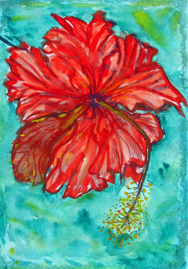 Flower Painting - Red Hibiscus Flower by Kelly     ZumBerge