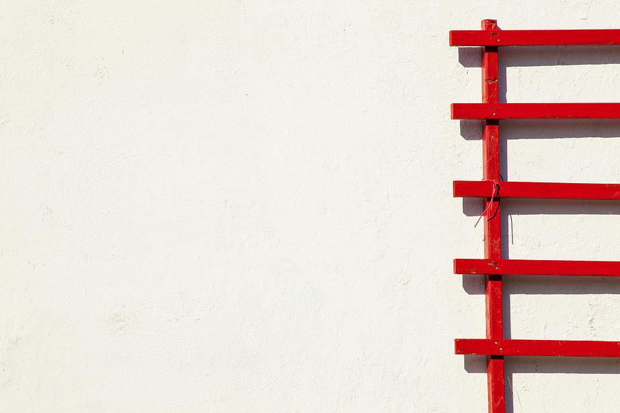 Red On White by Karol Livote