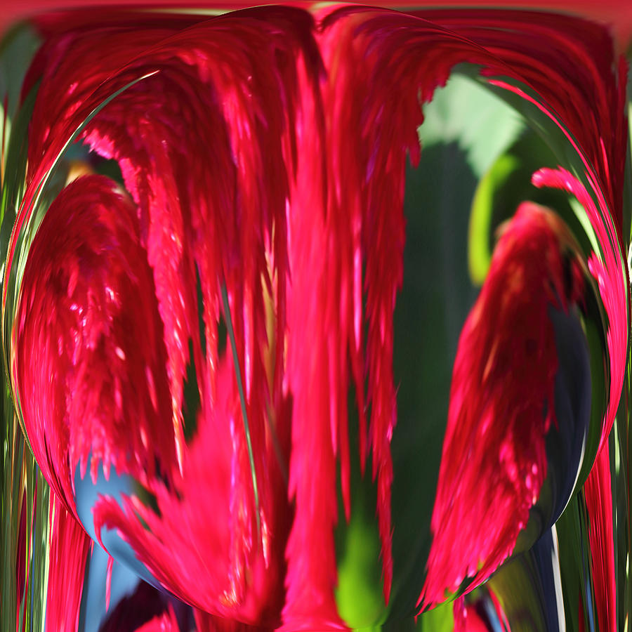 Flower Photograph - Red Orb by Rhonda Humphreys