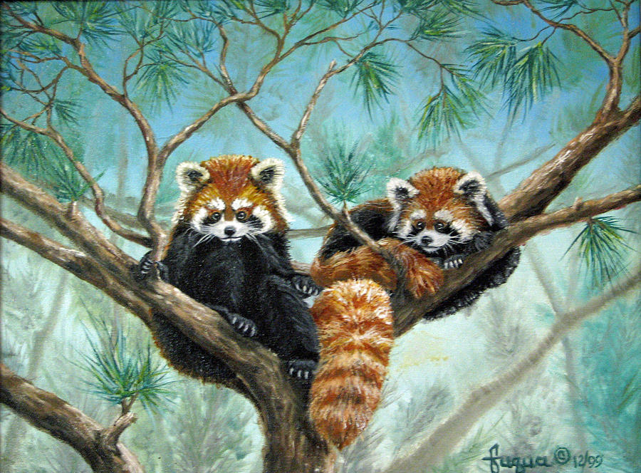 Red Pandas by Beverly Fuqua