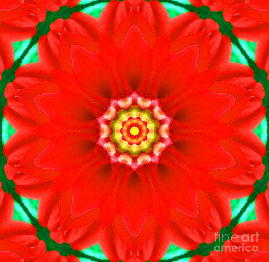 Flower Photograph - Red Pedal Star by Annette Allman