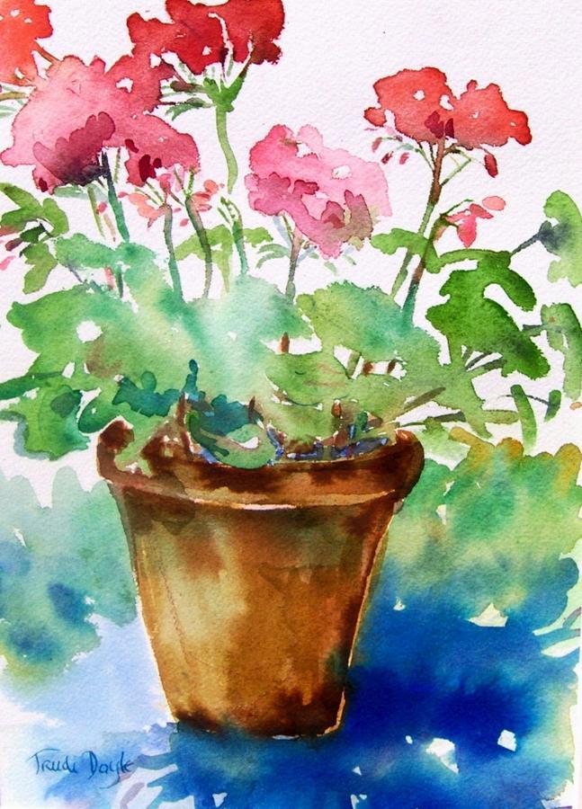 Red Pelargonium Painting By Trudi Doyle