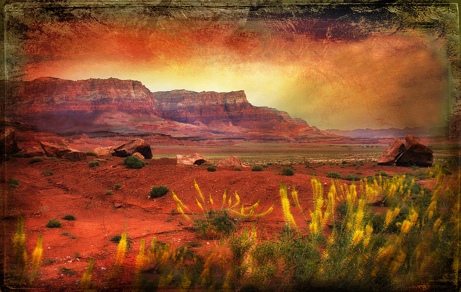 Arizona Photograph - Red Planet by Barbara Manis