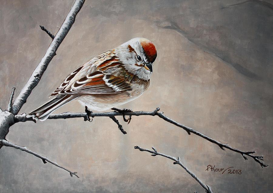 Red Poll Painting - Red Poll by Pam Kaur