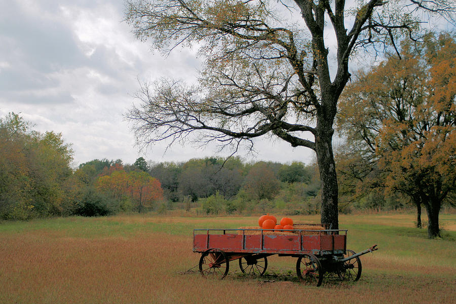 Wagon Photograph - Red Pumpkin Wagon by Paulette Maffucci