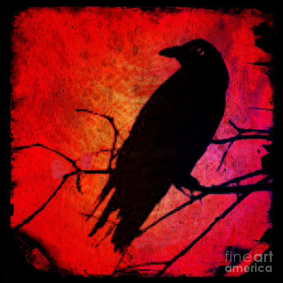 Red Raven Photograph by Michelle Mark