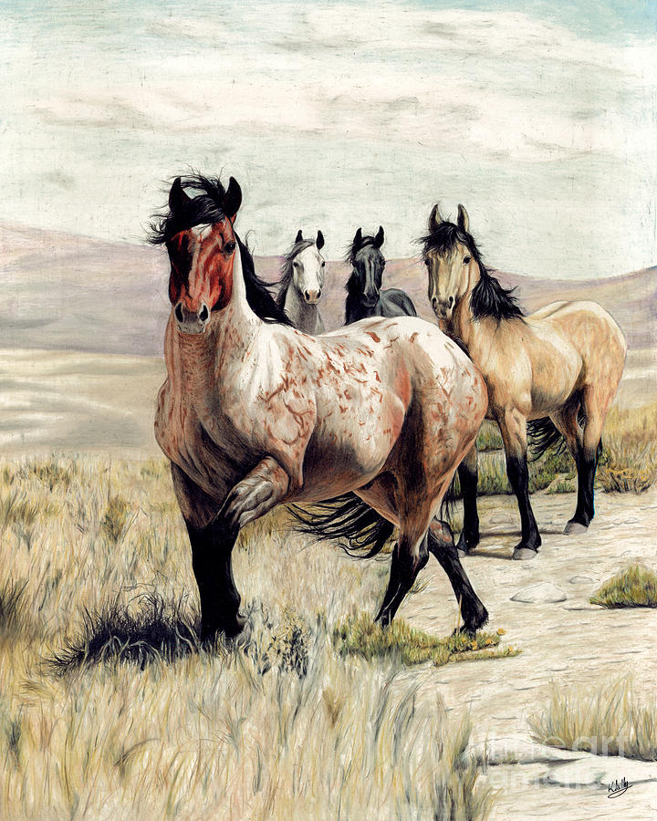 Rabid Horse Artwork Home Facebook - 720×900