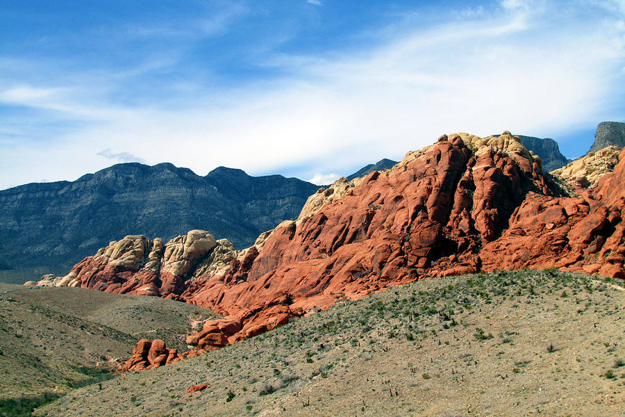 Red Rock Canyon Photograph - Red Rock Canyon by Andrea Dale
