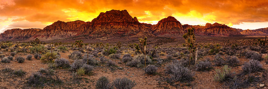 Las Vegas Photograph - Red Rock Canyon Las Vegas Nevada Fenced Wonder by Silvio Ligutti