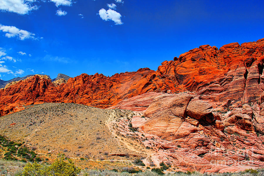 Red Rock Canyon Photograph - Red Rock Canyon by Mariola Bitner