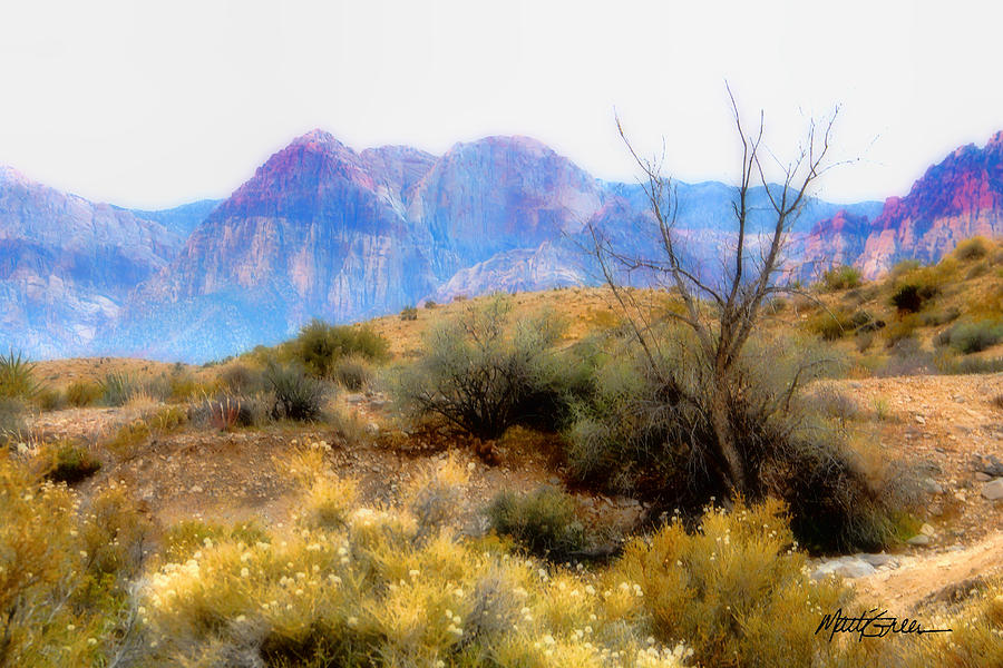 Red Rock Canyon Photograph - Red Rock Canyon by Marti Green