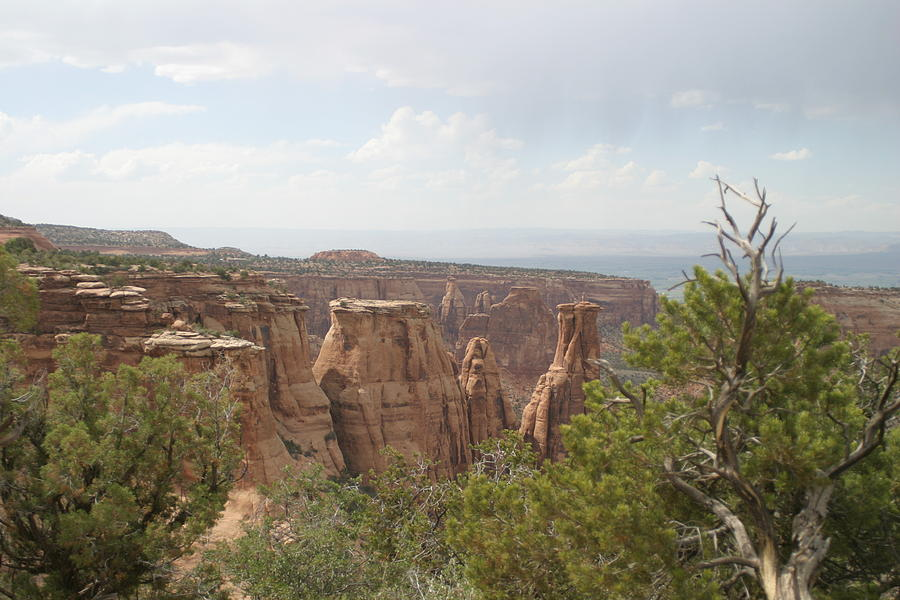 Red Rock Canyon Photograph