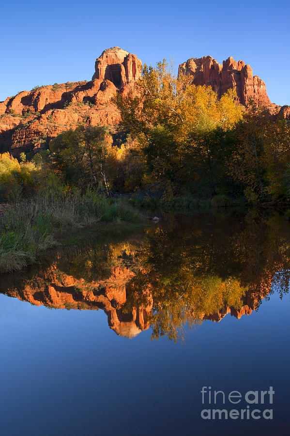 Sedona Photograph - Red Rock Reflections by Mike  Dawson