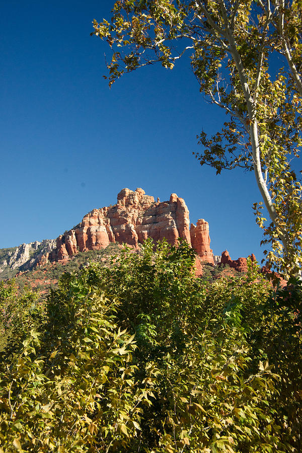 Red Rocks At Oak Creek Canyon 1 Photograph