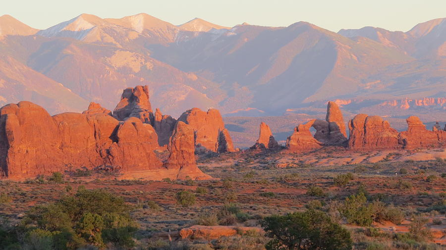 Arches National Park Photograph - Red Rocks In Arches National Park by Diane Mitchell