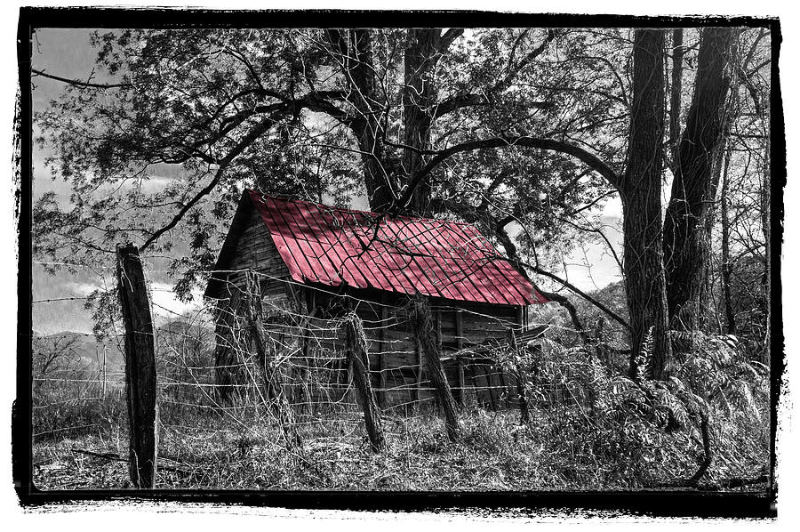 Andrews Photograph - Red Roof by Debra and Dave Vanderlaan