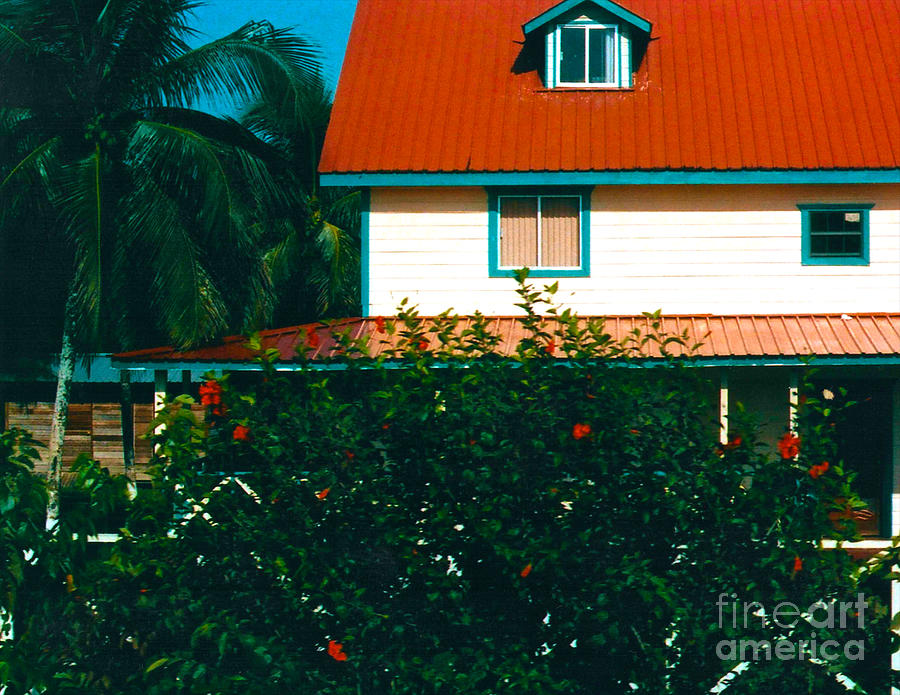 Red Roof Home Photograph