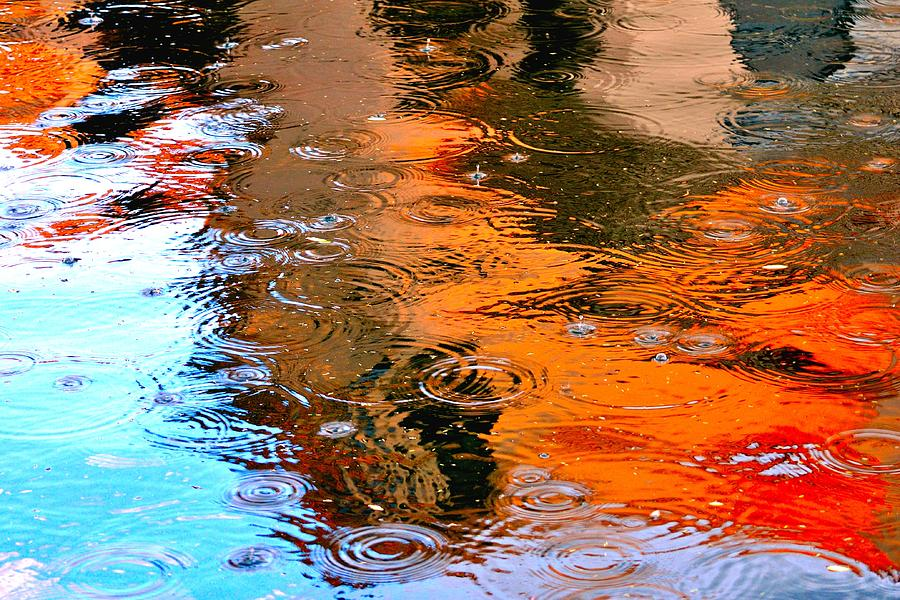 Red Roof Tile Reflection 29412 Photograph