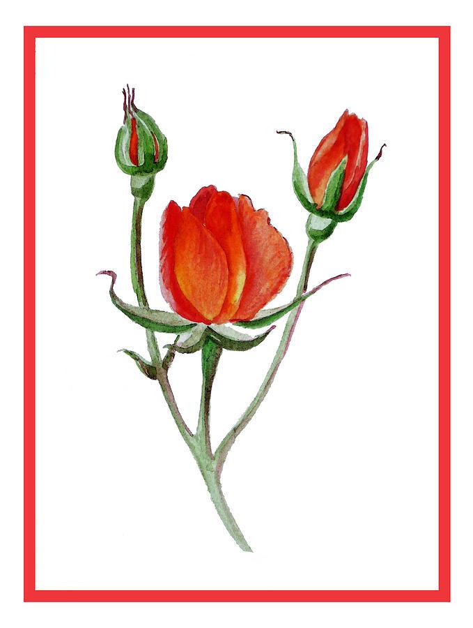 Rose Painting - Red Rose by Irina Sztukowski
