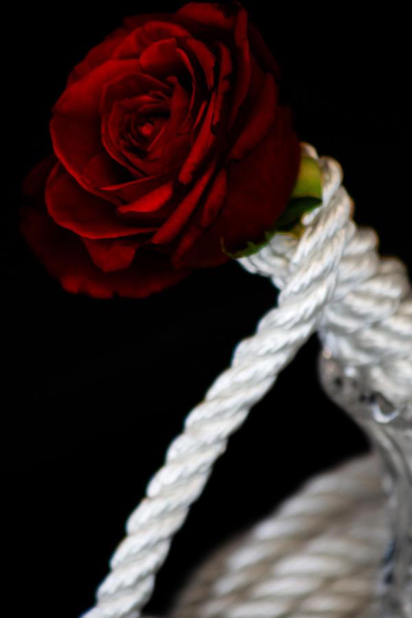Blake rose bdsm love lick
