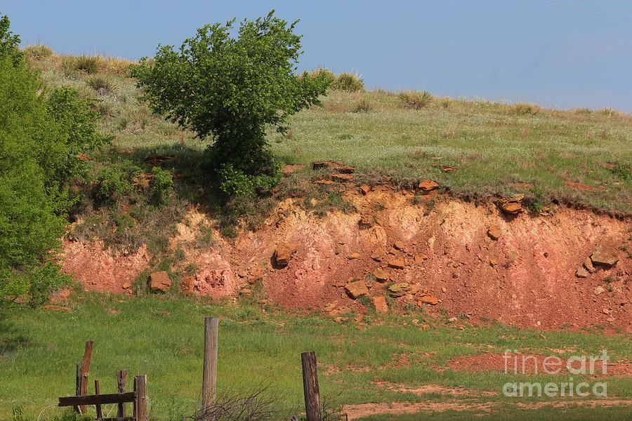 Red Photograph - Red Sandstone Hillside With Grass by Robert D  Brozek