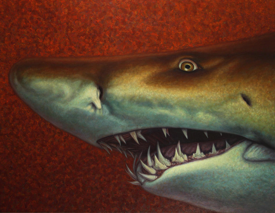 Shark Painting - Red Sea Shark by James W Johnson