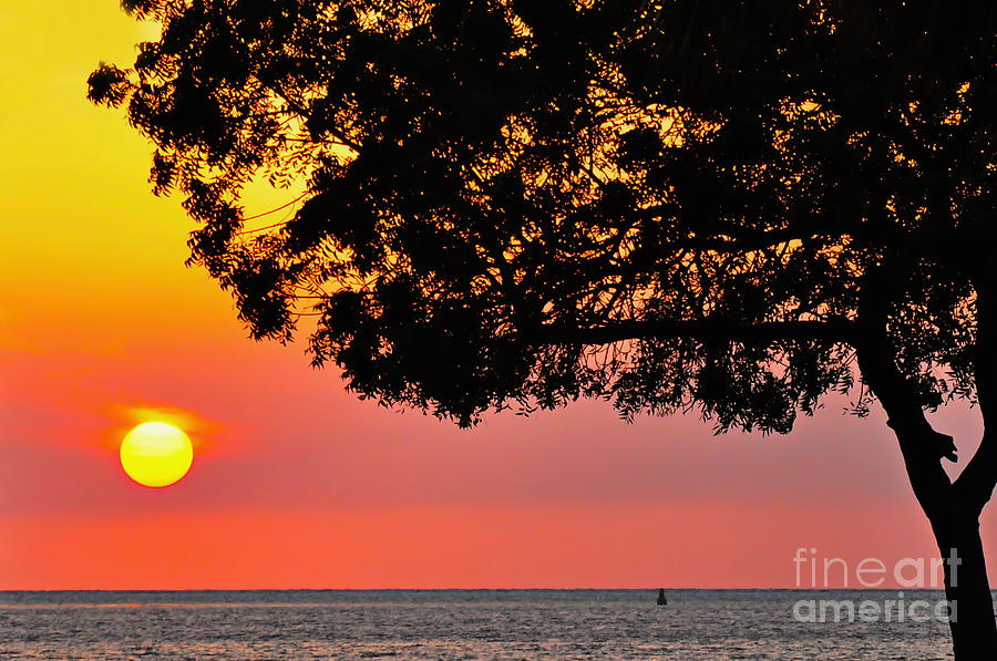 Sunset Photograph - Red Sea Sunset by George Paris