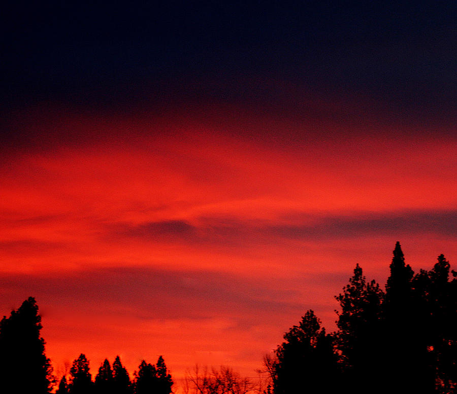 Landscape Photograph - Red Sky In  The Bitterroot  by Larry Stolle