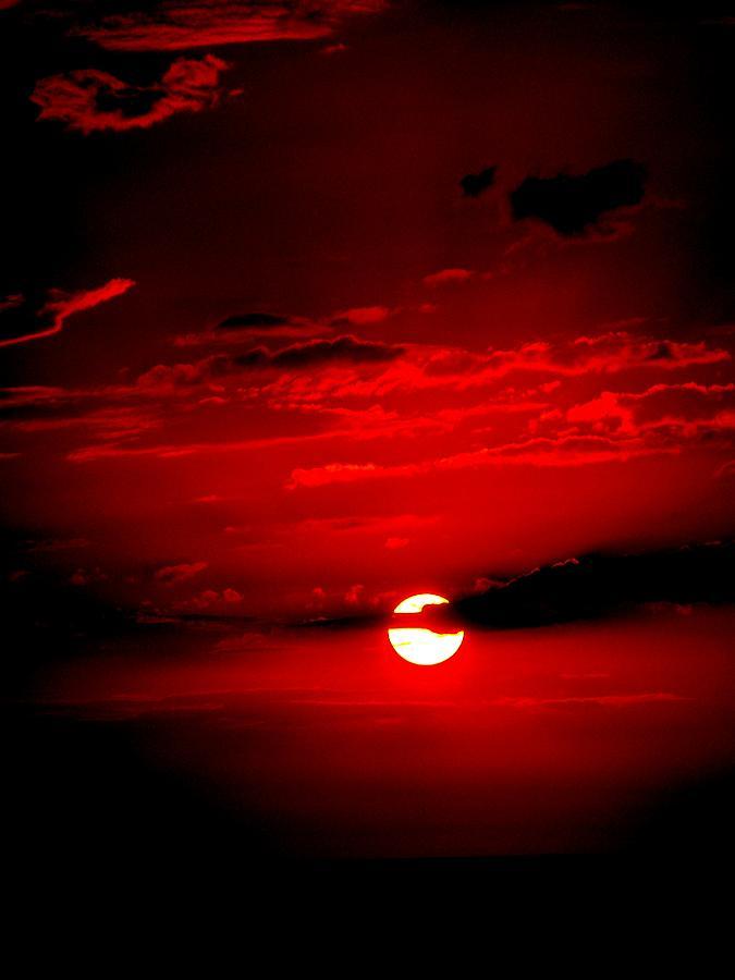 Nebula - Trinity - Página 3 Red-sun-katie-beougher