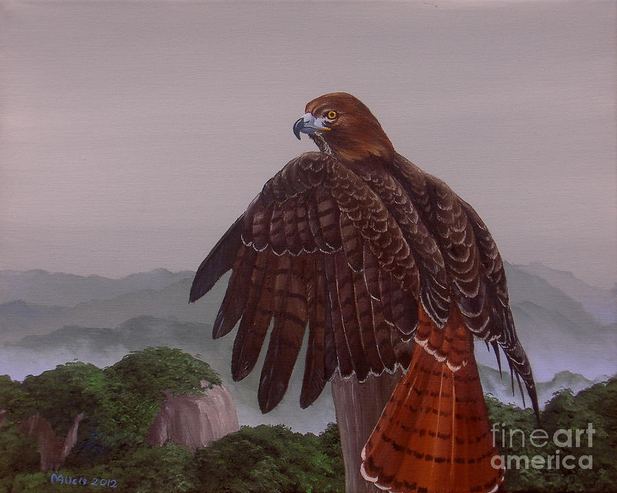 Red-Tail Over Blue Ridge by Michael Allen