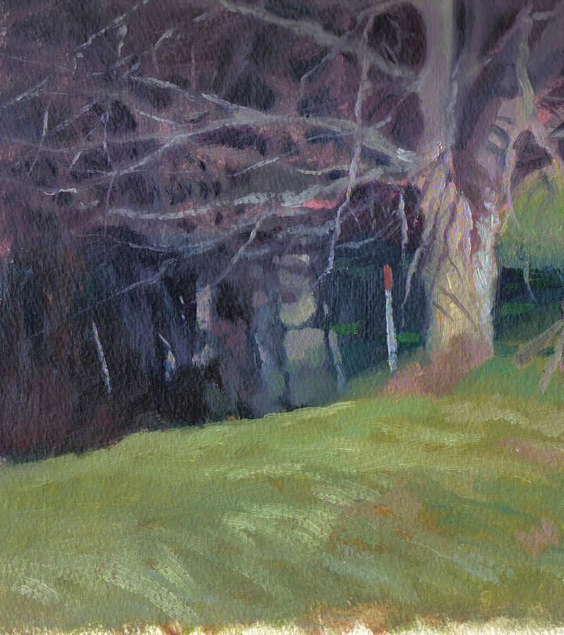 Landscape Painting - Red Top Fence Post by John L Campbell