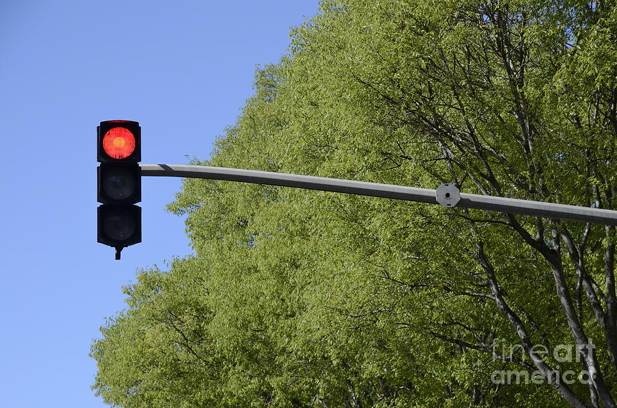 Guidance Photograph - Red Traffic Light By Trees by Sami Sarkis