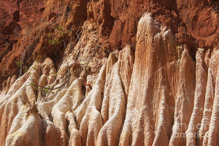 Rudi Photograph - red Tsingy Madagascar by Rudi Prott