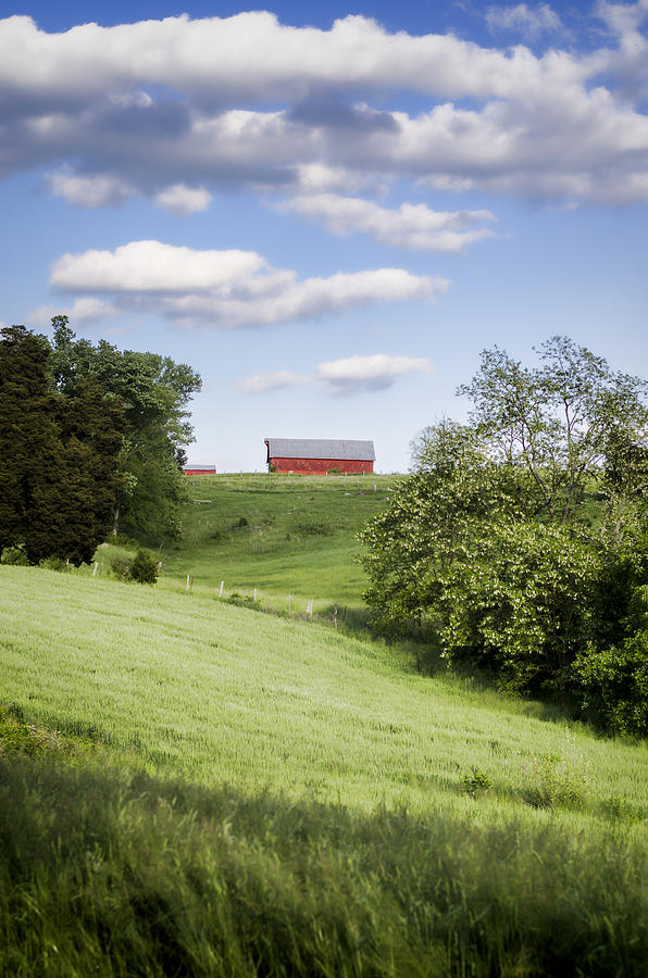 Barn Photograph - Red White And Blue by Heather Applegate